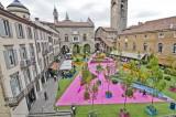 diecimila-piante-in-piazza-vecchia-verde-si-ma-con-tanto-magenta_09b9fc08-346e-11e4-bb6d-a45a19305ddc_display
